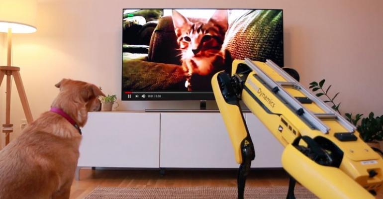 Spot, κάτω! Όλα όσα ξέρουμε για το «τετράποδο» ρομπότ της Boston Dynamics